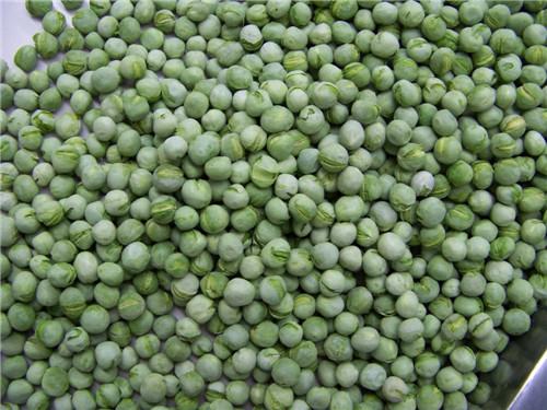 冻干wan豆