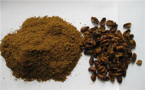 微波干燥蚕蛹粉